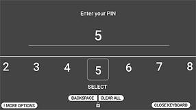 RealWear PIN Entry