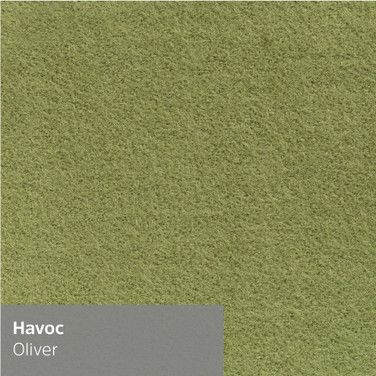 havoc-oliver.jpg