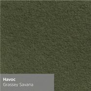 havoc-Grassey-Savana.jpg