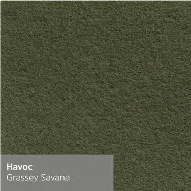 Grassey Savana