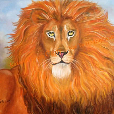 Lion One.jpg