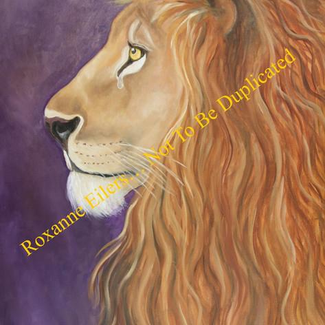 Lion 2.jpg