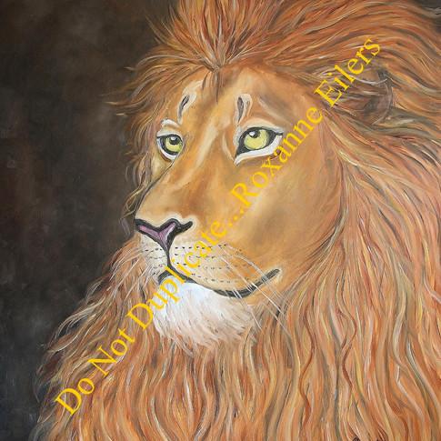 Lion 7.pub 8.jpg