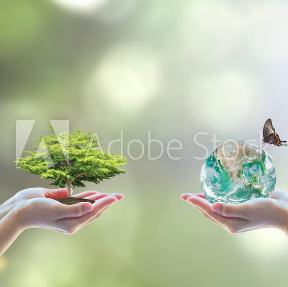 AdobeStock_119789986_Preview.jpeg