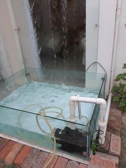 Water Fall or Jharna