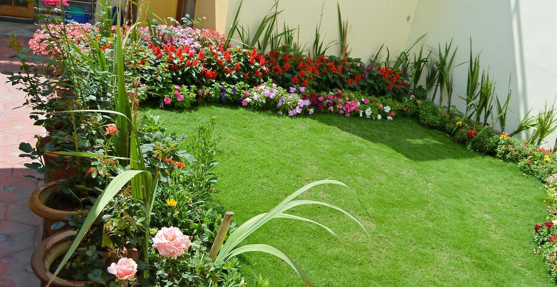 Terrace%20Garden_edited.jpg