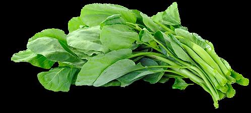 Fresh Bitter leaf