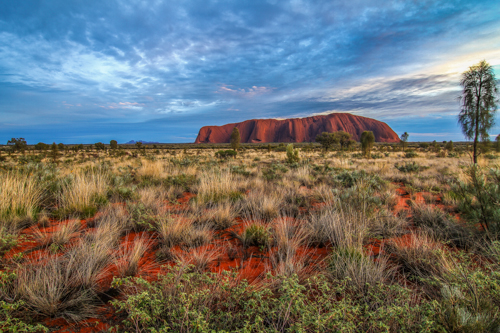 Ayers Rock am Morgen (8)