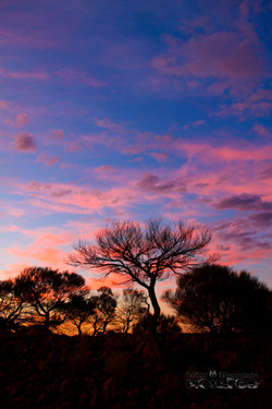 Outback Sunset 3