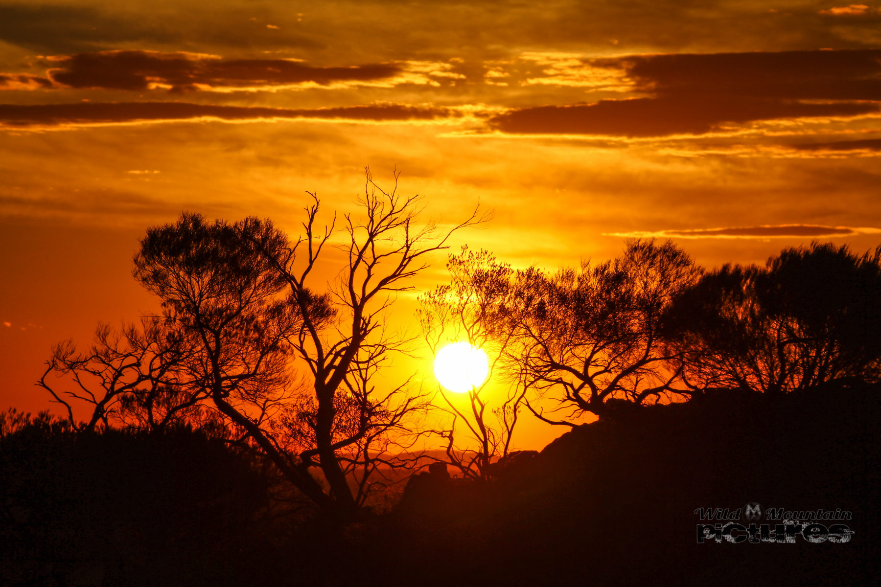 Outback Sunset 5