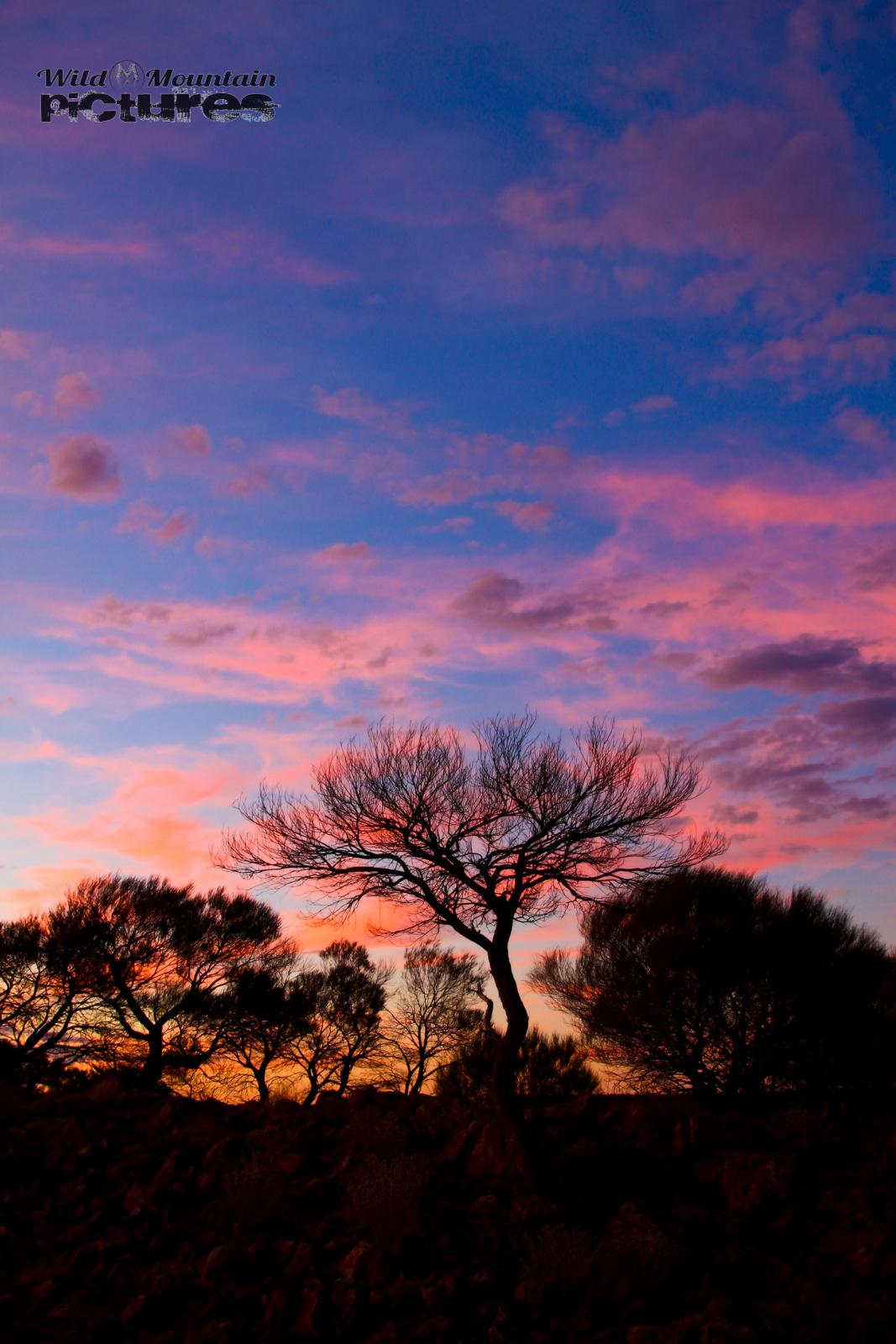 Sunset at Mount Augustus NP 2