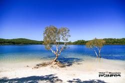 Lake McKenzie At Fraser Island