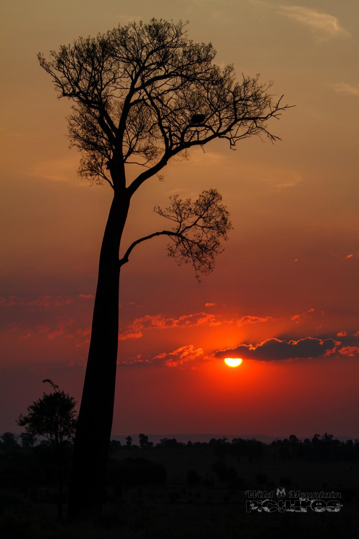 Myella Sunset