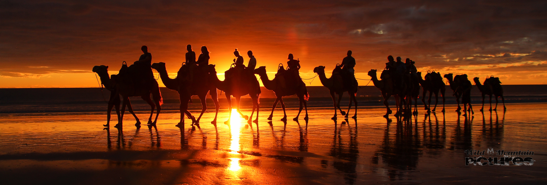 Camel-Karavane am Cable Beach in Broome_20