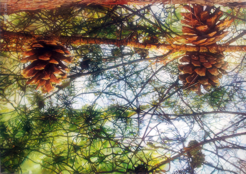 140X100cm pinecone.jpg