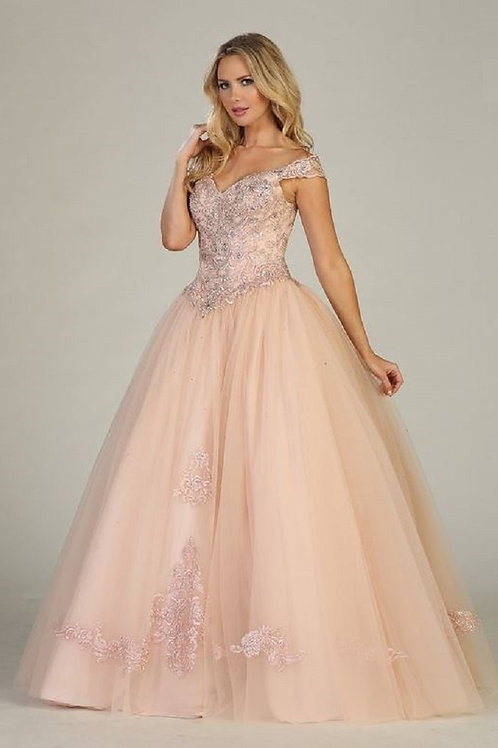 Blush Appliqued Ball Gown Size 2XL