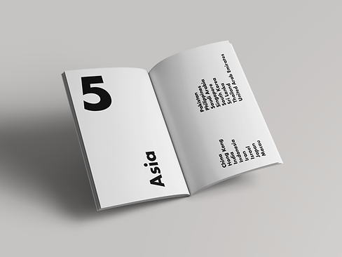 book mock up 3.png