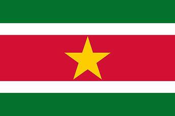 suriname flag.jpg
