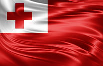 tonga wave flag.jpg