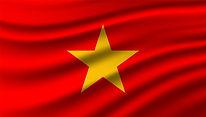 flag-vietnam-background-template_19426-5