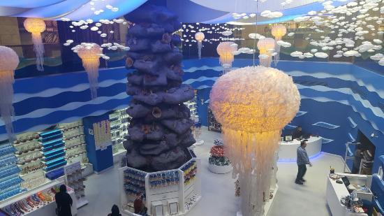 aqua-vega-akvaryum