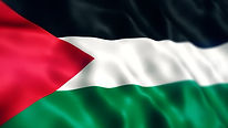 palestine flag.jpg