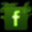 FB Logo green02.png