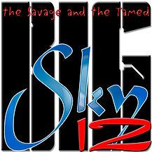 Big Sky 12 Logo02 WIX.jpg