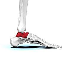 足首には疲労が溜まります