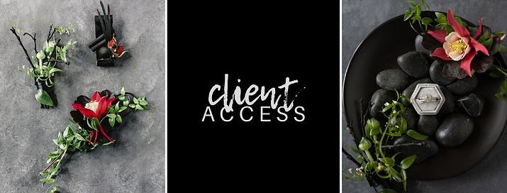 Le Festin Events Client Access.jpg