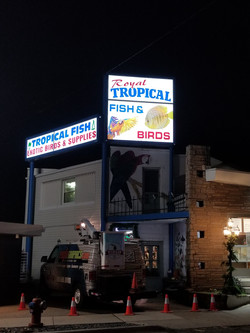 Sign Faces with LED Conversion