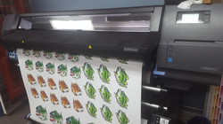 Printed Fish Decals Scales & Tales