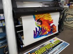 HP Latex Translucent Vinyl Print