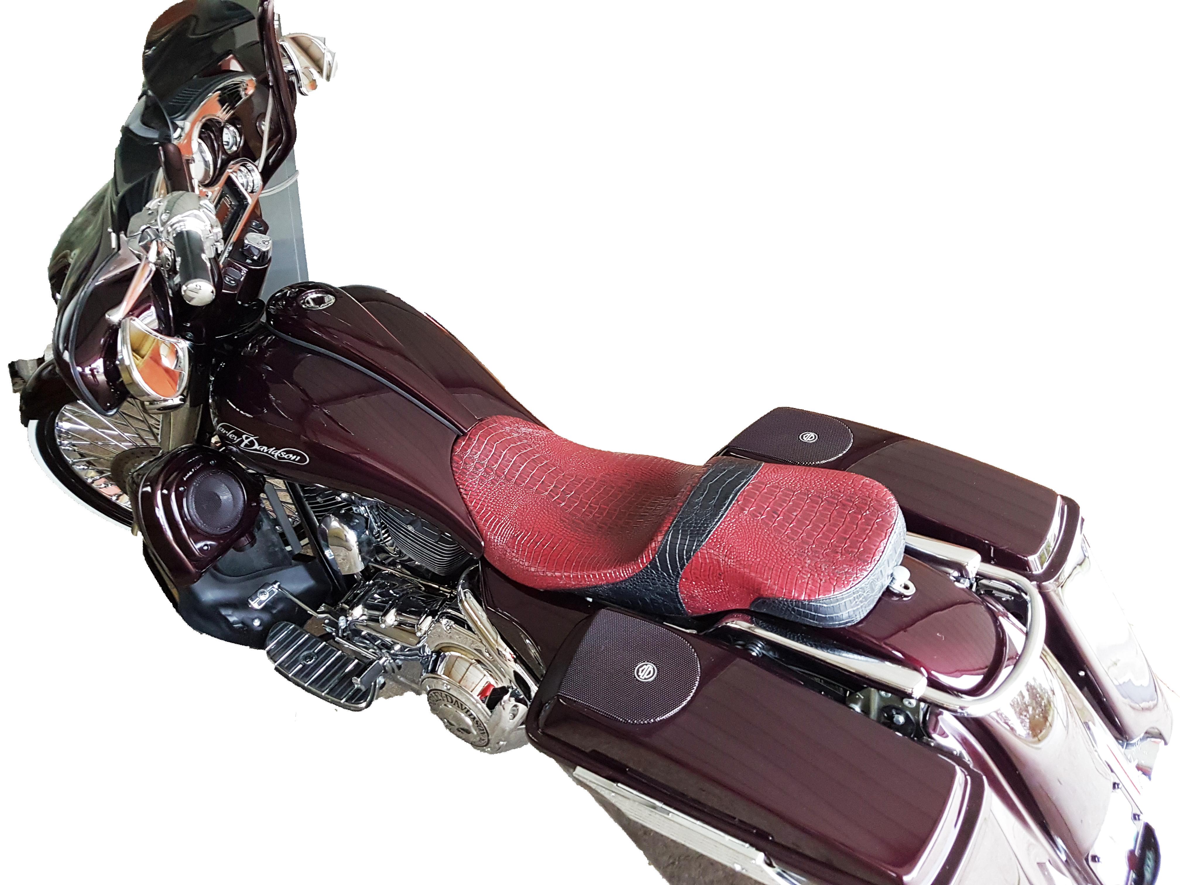 motorcycle snake skin