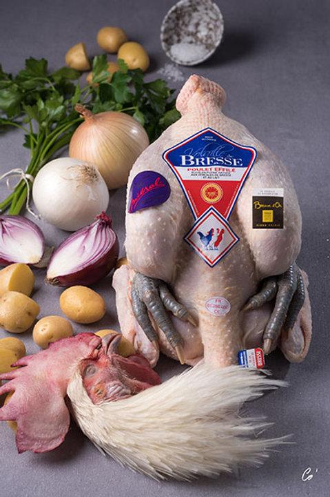 Poulet de Bresse 2,3 kg