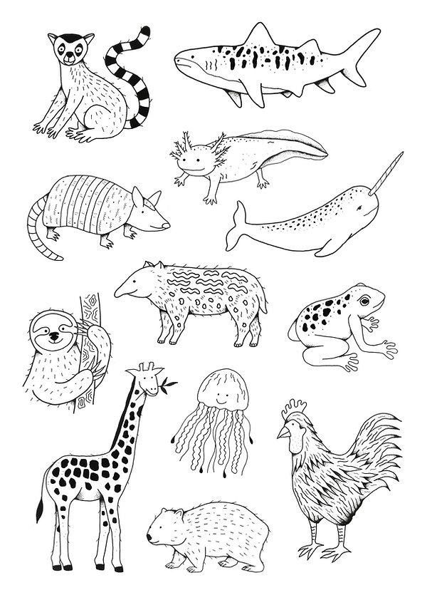 animals-pdf.jpg