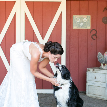 NEMA_Photography-Ward-Hollister_Wedding0