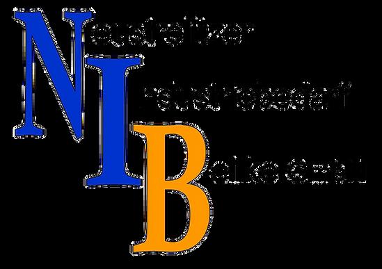 NIB_A3.png