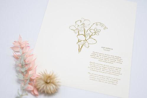 O-Shoppe Botanical Star Sign Prints