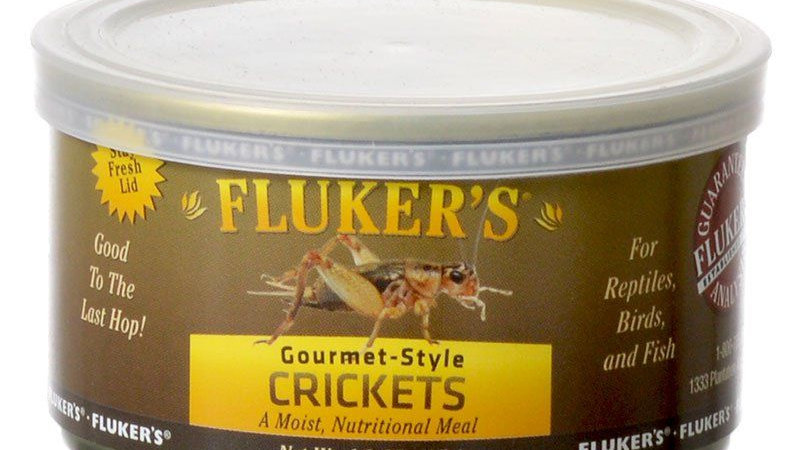 Flukers Gourmet Style Canned Crickets