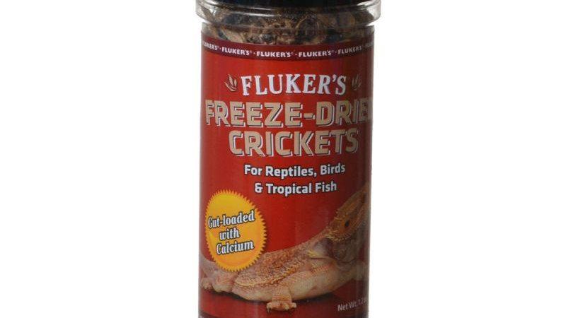 Flukers Freeze-Dried Crickets