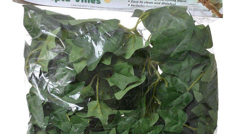 Flukers English Ivy Repta-Vines