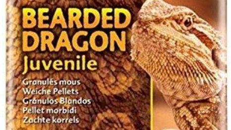 Exo Terra Soft Pellets Juvenile Bearded Dragon Food