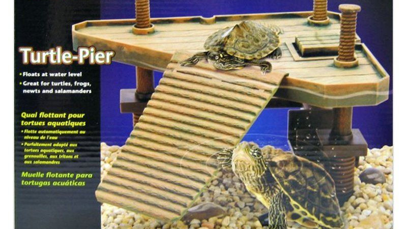 Reptology Floating Turtle Pier