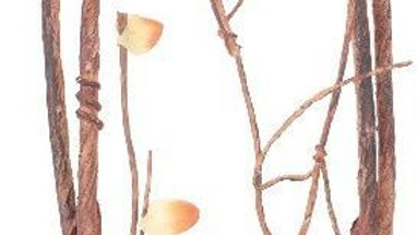 Reptology Climber Vine with Leaves Brown