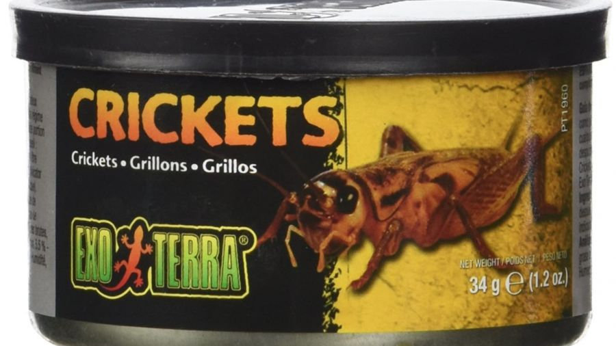 Exo Terra Canned Crickets Specialty Reptile Food