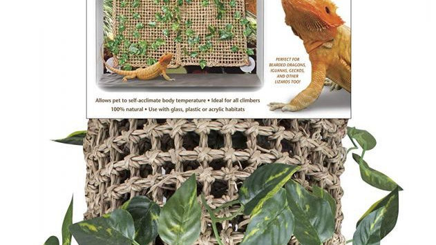 Penn Plax Reptology Lizard-Lounger Vine Backdrop