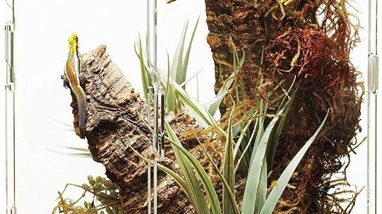 Zilla Micro Habitat Arboreal Home for Tree Dwelling Small Pet