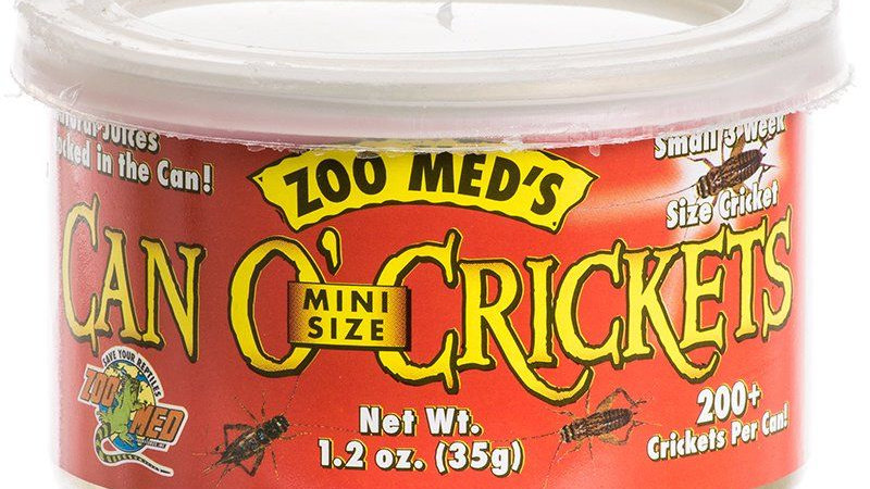 Zoo Med Can O' Mini Sized Crickets