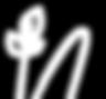 Narje_Icon_Logo_White.png